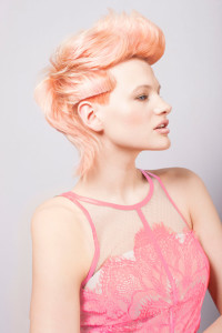 Wella Trend Vision Regional Finalist Entry Model 2014